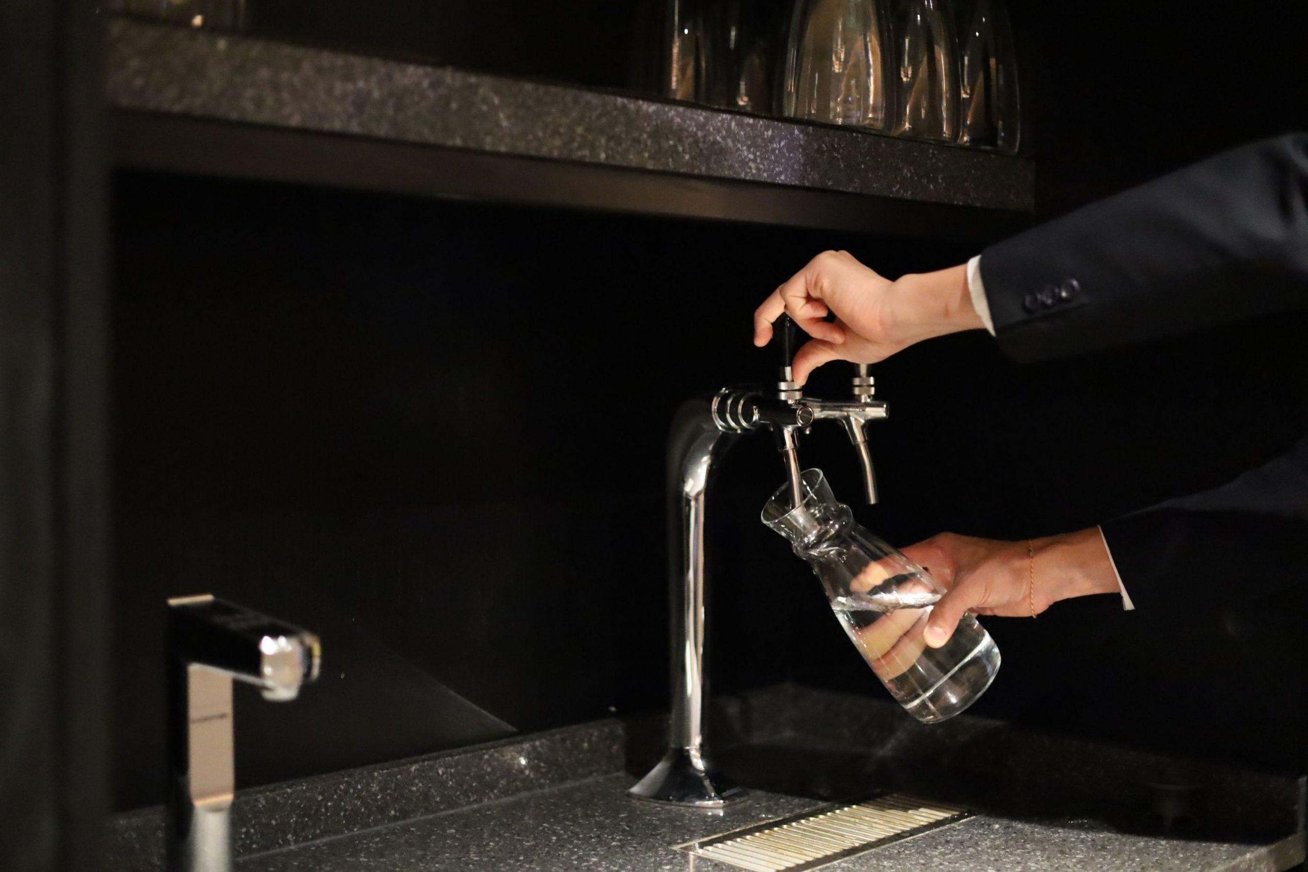 SwissPro Water Filter